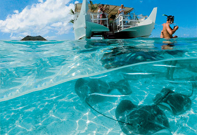 Bora Bora - Stingray Ballet and Snorkel Safari